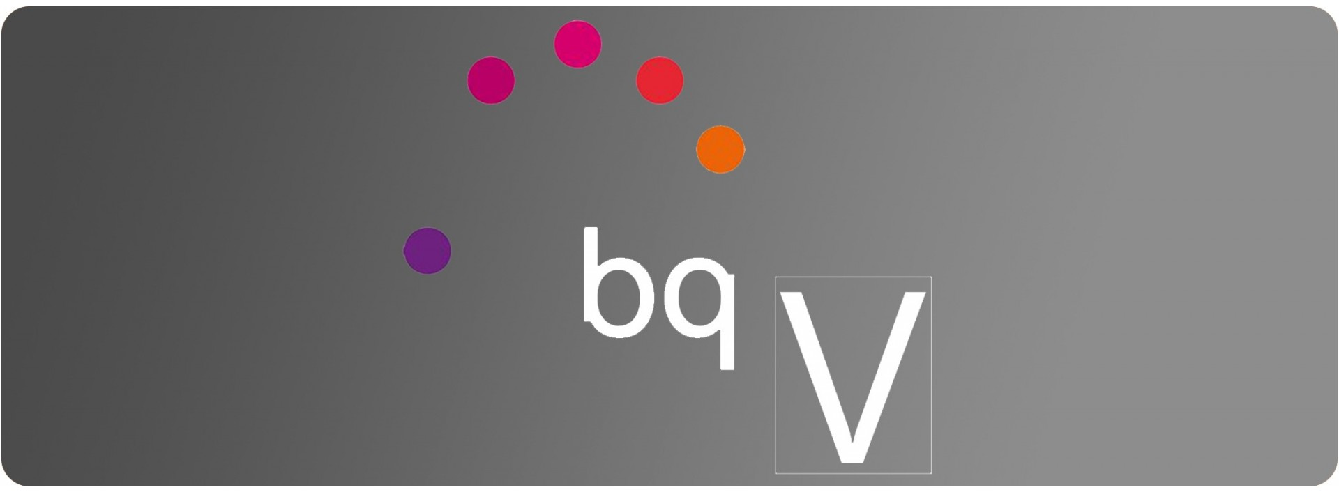 Fundas para Bq Serie V