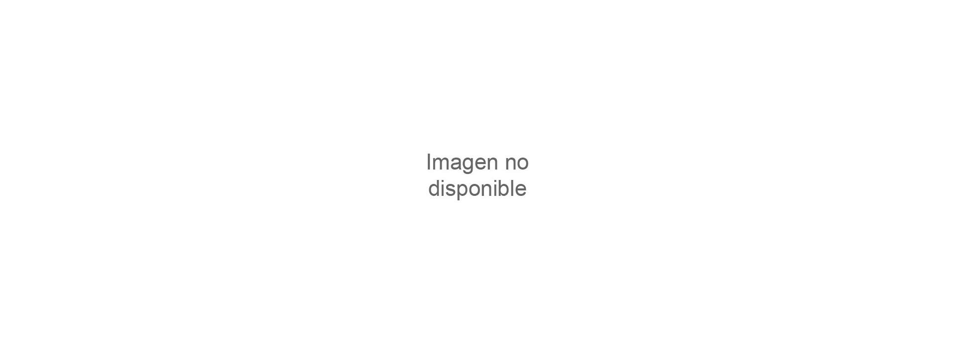 iPad Pro 11 (2020) 2ª Gen